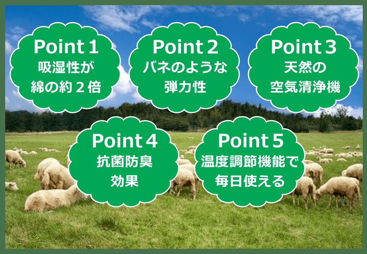 羊毛の5つのポイント